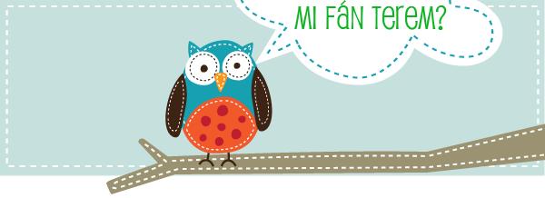 mi-fan-terem-1_01