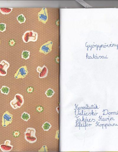 Velicskó Dominik és csapata
