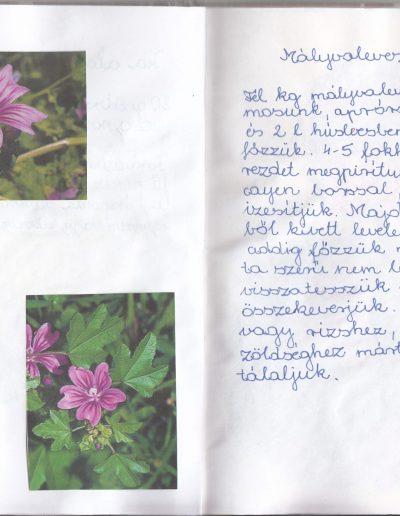 Velicskó Dominik és csapata_0014