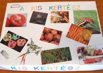 Kertész társasjáték Projekt munka 1